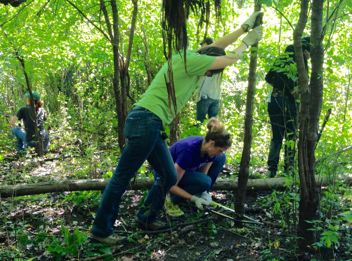 sca volunteers conserve chicago for public lands day