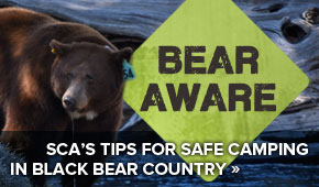 Get SCA's Free Guide to Safe Camping in Black Bear Country