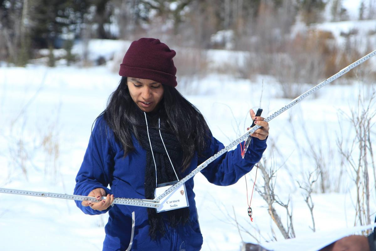 NPS Academy student measuring moose forage at Grand Teton National Park.