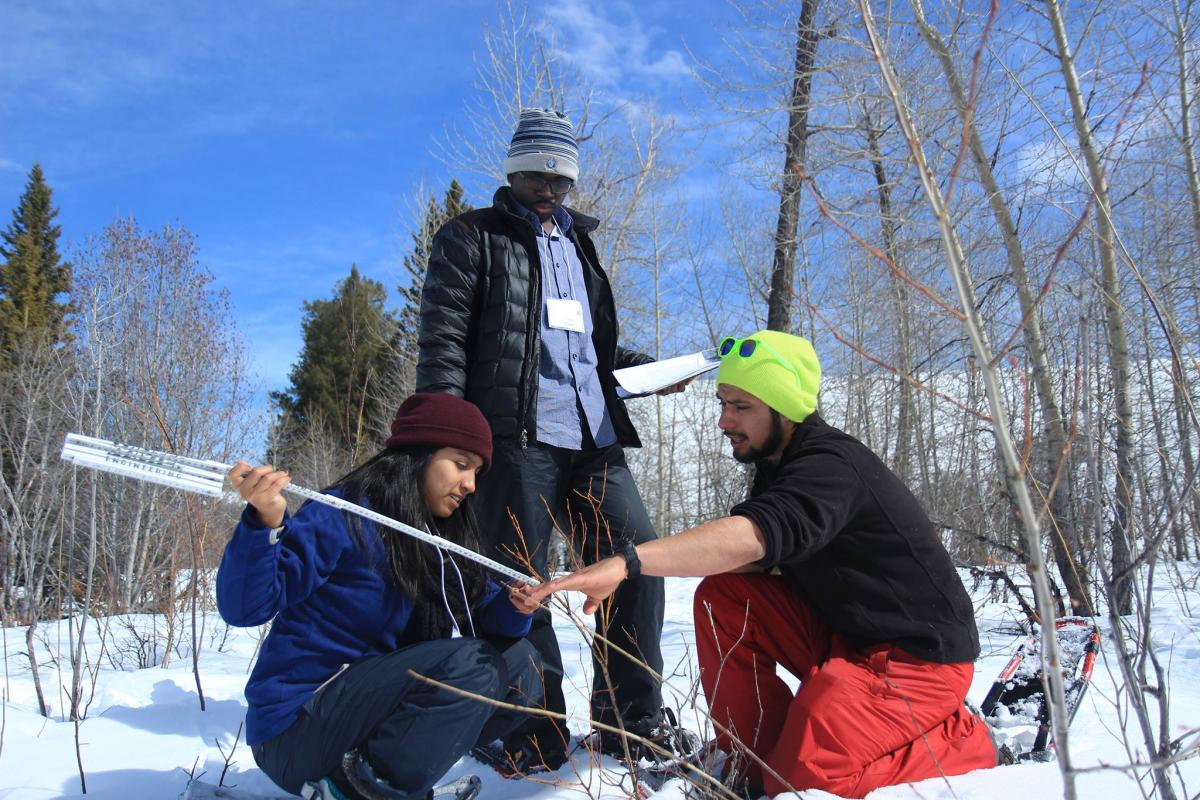 NPS Academy students measuring moose forage at Grand Teton National Park.