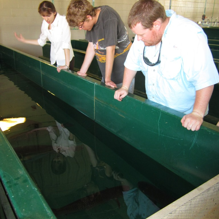 Mississippi you 39 re on my mind the student conservation for Alabama fish hatcheries