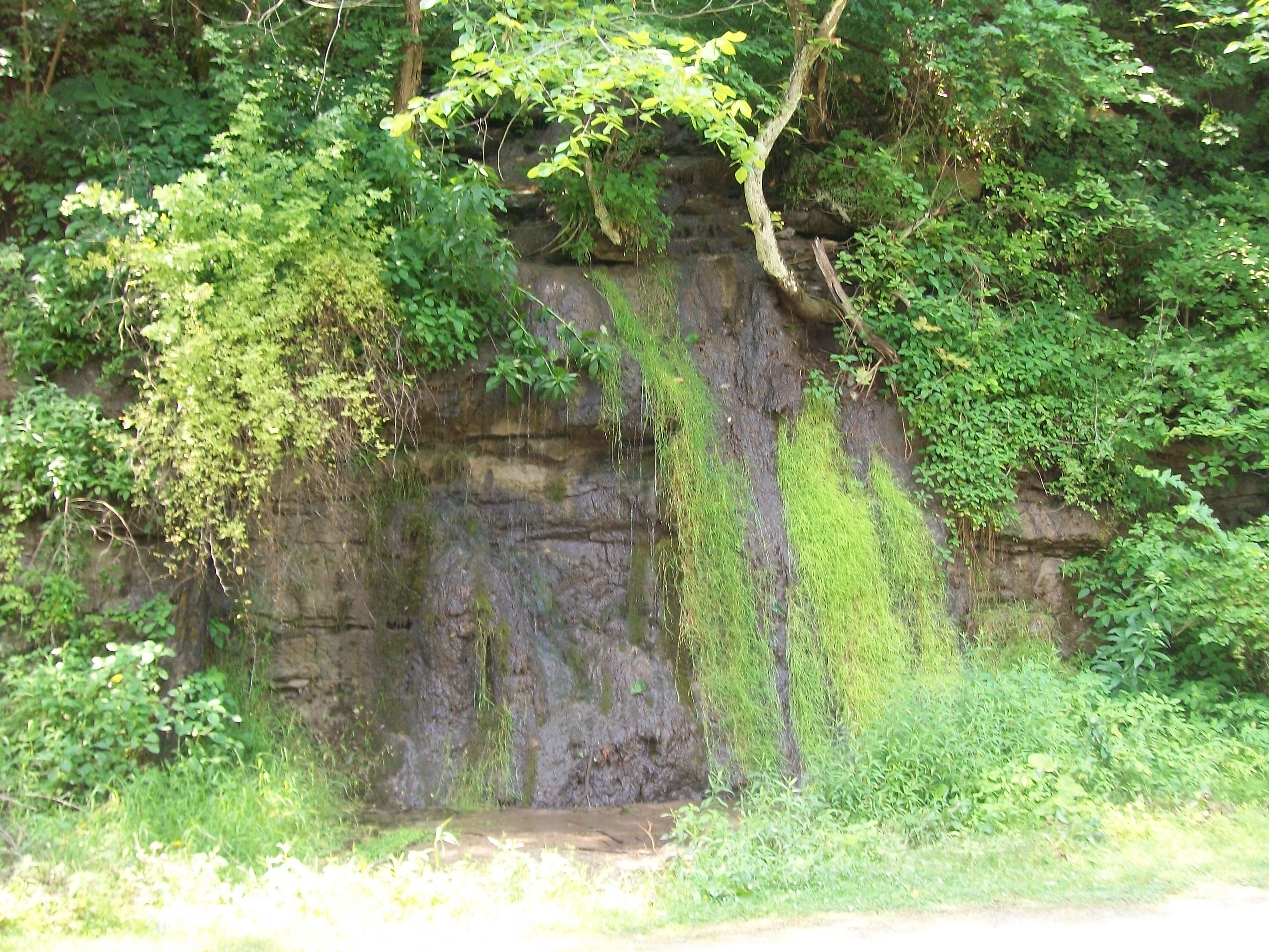 Waterfall Community Mis Login