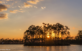 Everglades National Park by Matthew Paulson