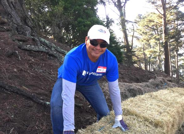 Union Bank employee placing hay bales along a steep slope