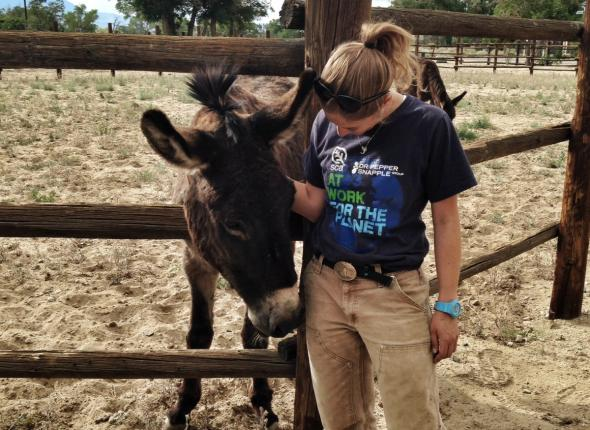 Mules are adorable and Leah couldn't resist this little guy's charm