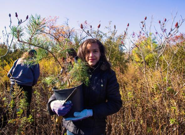 Youth volunteers plant trees with SCA