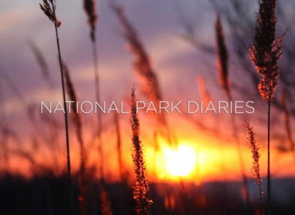 National Park Diaries