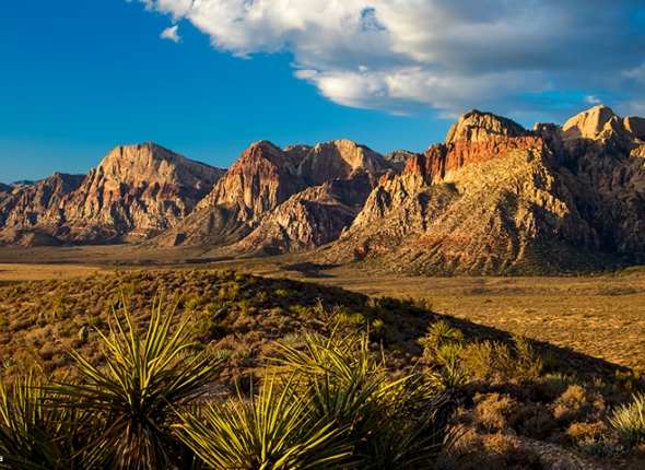 Red Rock Canyon National Conservation Area BLM