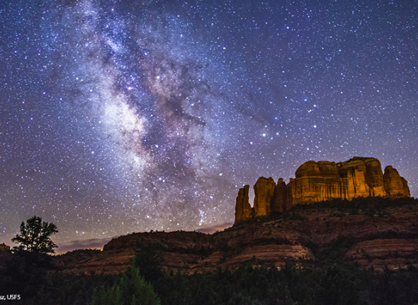 Night Sky in Arizona at Coconino National Forest