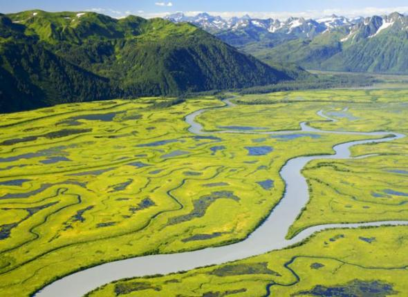 The Copper River Delta in Chugach National Forest. Photo source.