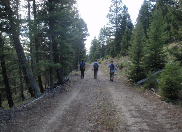 Andrea, John, Stephanie walking a u-route