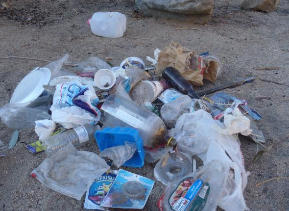 Trash collected by peaceful swimming hole.
