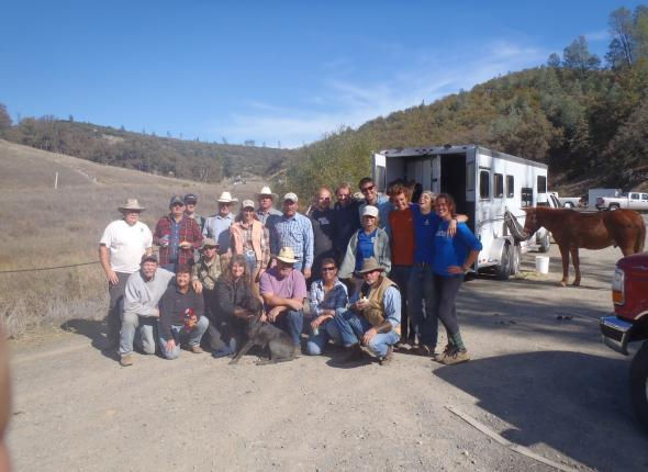 Wildcorps and the volunteer horsepackers