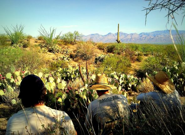 """Taking a break in the """"shade"""" at Cactus Forest, Saguaro"""