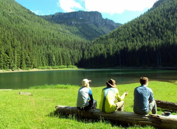 Lost Lake Campsite