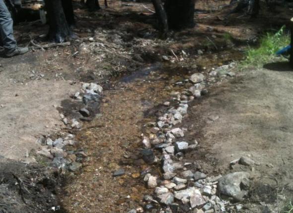 Valley Creek Trail
