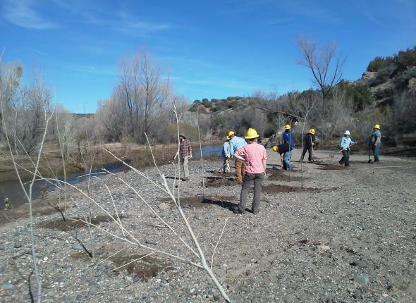 Pole Planting at Agua Fria