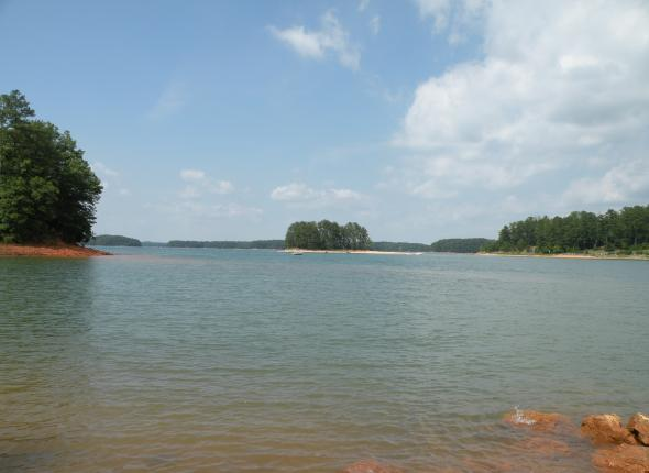 Lake Sidney Lanier from the shore