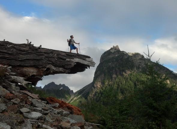 The Log Over Monte Cristo