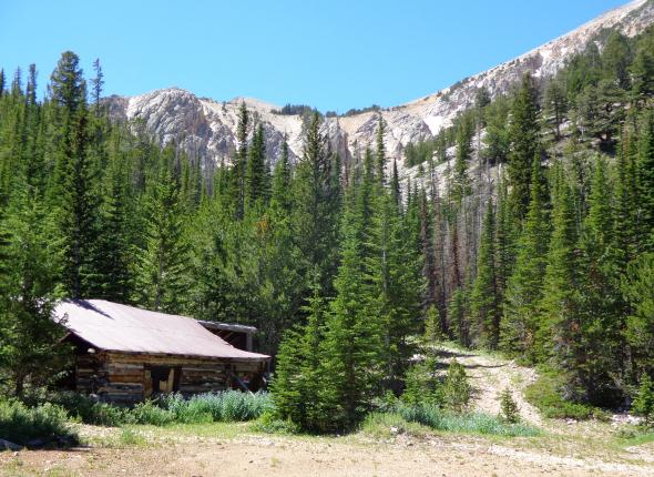 Mountain Boy cabin