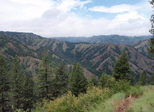 Wenaha-Tucannon Wilderness