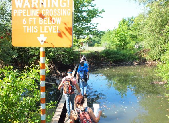 Atlanta team crosses the pipe bridge, looking for canebrake.
