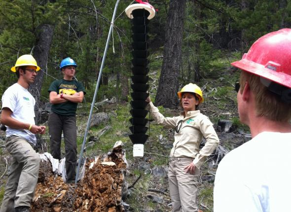 Laura Lazarus at Forest Service Disease and Insect Training showing us a Douglas Fir bark beetle trap.