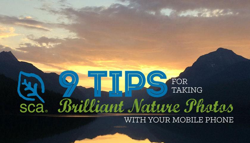 SCA's 9 Tips for taking Brilliant Nature Photos with your Cell Phone