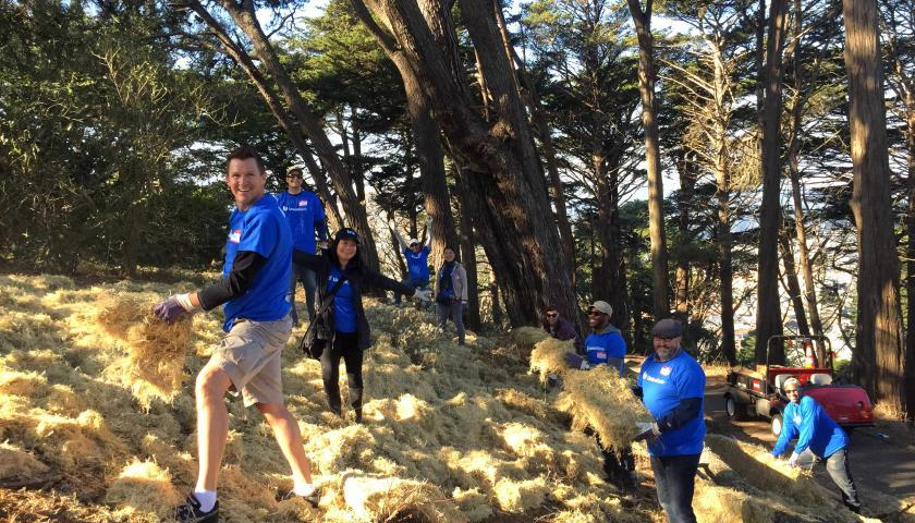 Union Bank employees spreading hay along the steep slopes to help prevent erosion