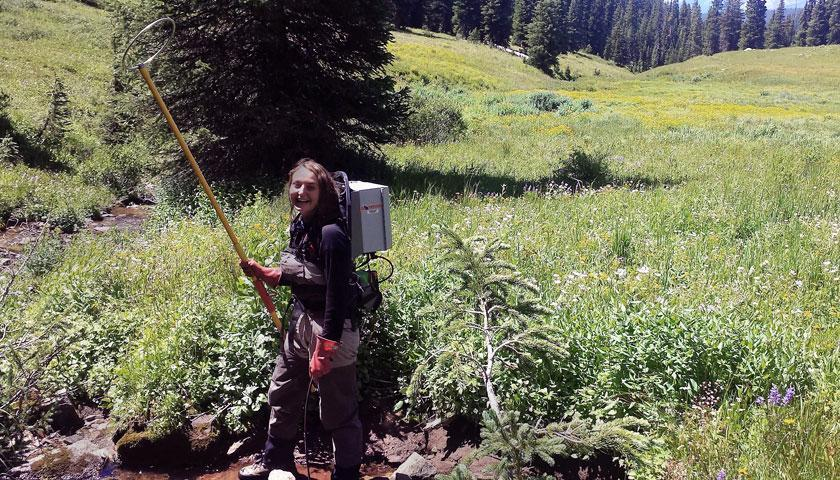 SCA Intern Alex Kirk uses an electro-shocker to stun non-native brook trout in the White River National Forest