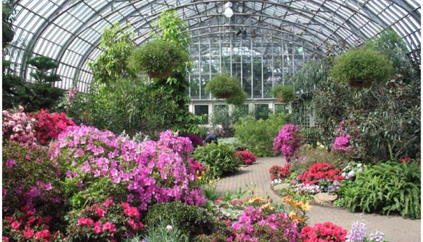 Exelon Employee Engagement Project At Garfield Park Conservatory Chicago The Student Conservation Association