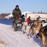 SCA Alum Dave Delcourt races his team in Willow Alaska