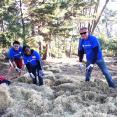 Spreading hay to help prevent erosion