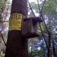 A lovingly crafted birdbox