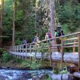 Greenwater Lake Trail