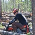 Saint Louis Creek Campground Restoration Frazer CO 2013